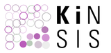 kinsis-kurz-pos-v2